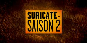 SURICATE : La saison 2 sur Golden Moustache !