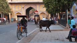 Les carnets de voyage en Inde d'Allen Ginsberg