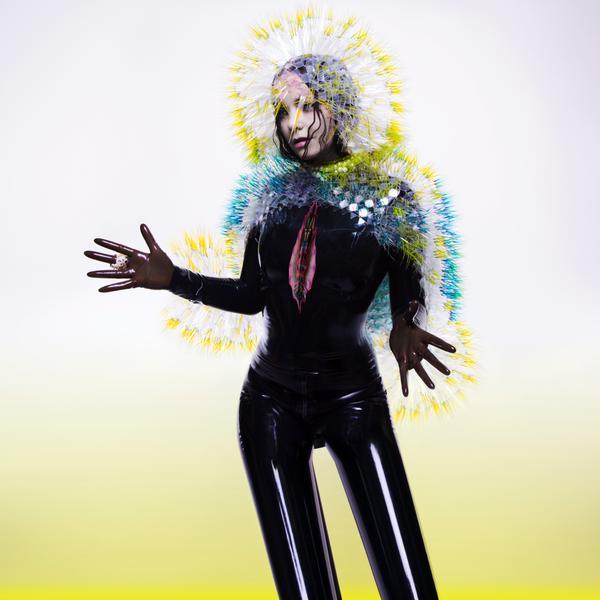 "Björk sort son dernier album ""Vulnicura"""