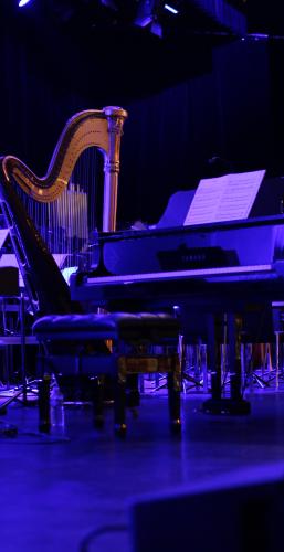 Piano-Harpe