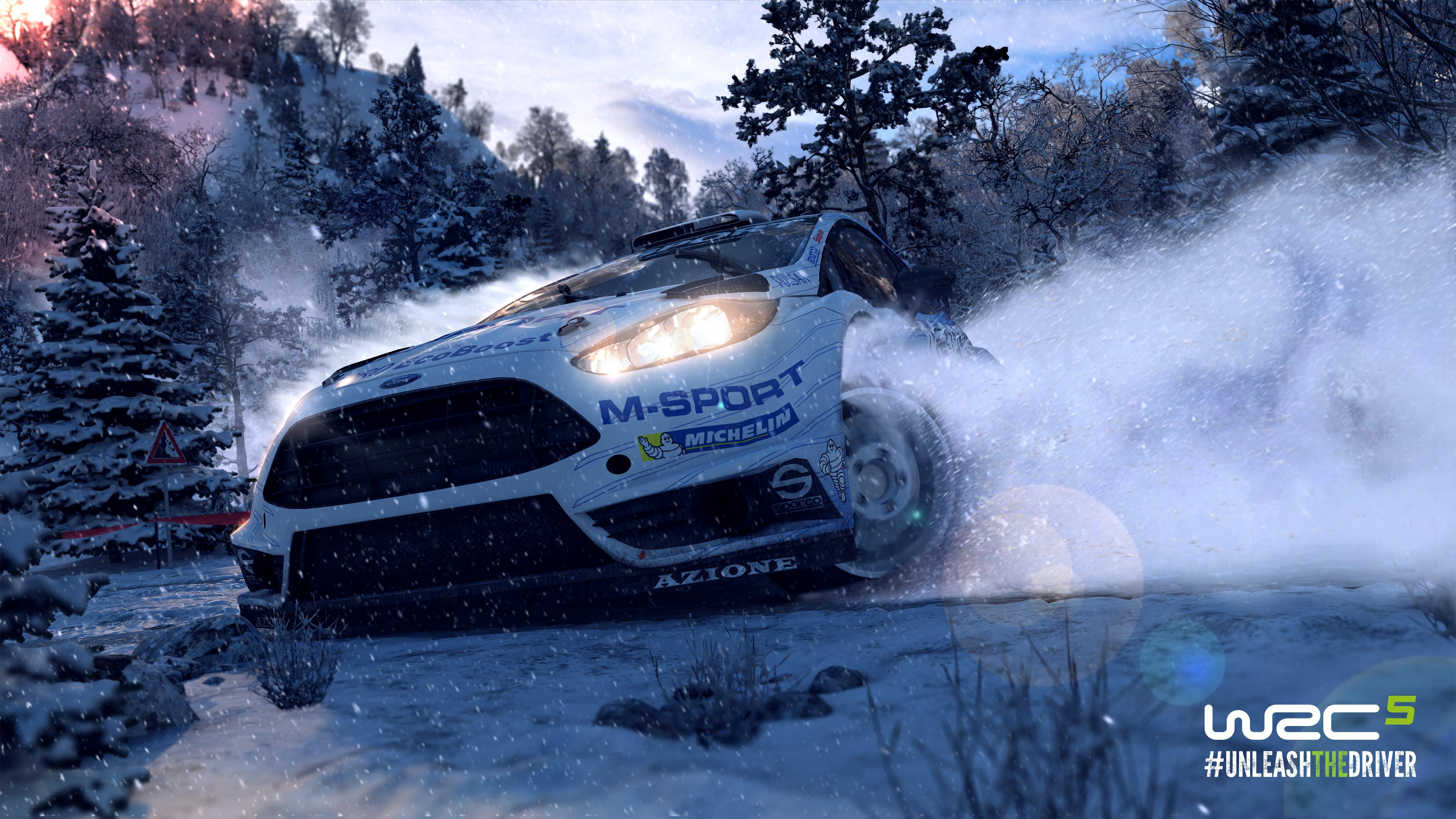 WRC5 Ford Fiesta