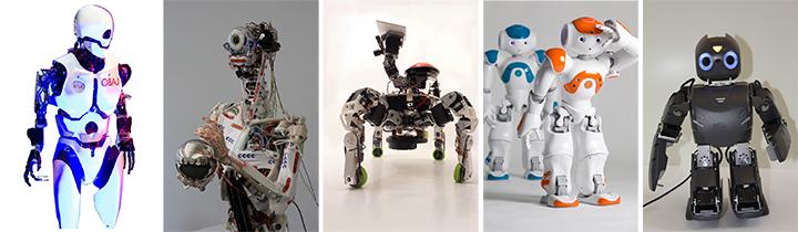 Japan Expo 2015 Robots
