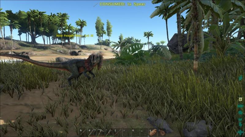 ARK Survival Evolved 16
