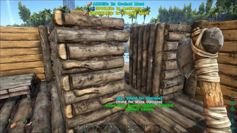 ARK Survival Evolved 19