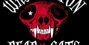 Les Washington Dead Cats en concert à la Maroquinerie le samedi 10 Octobre