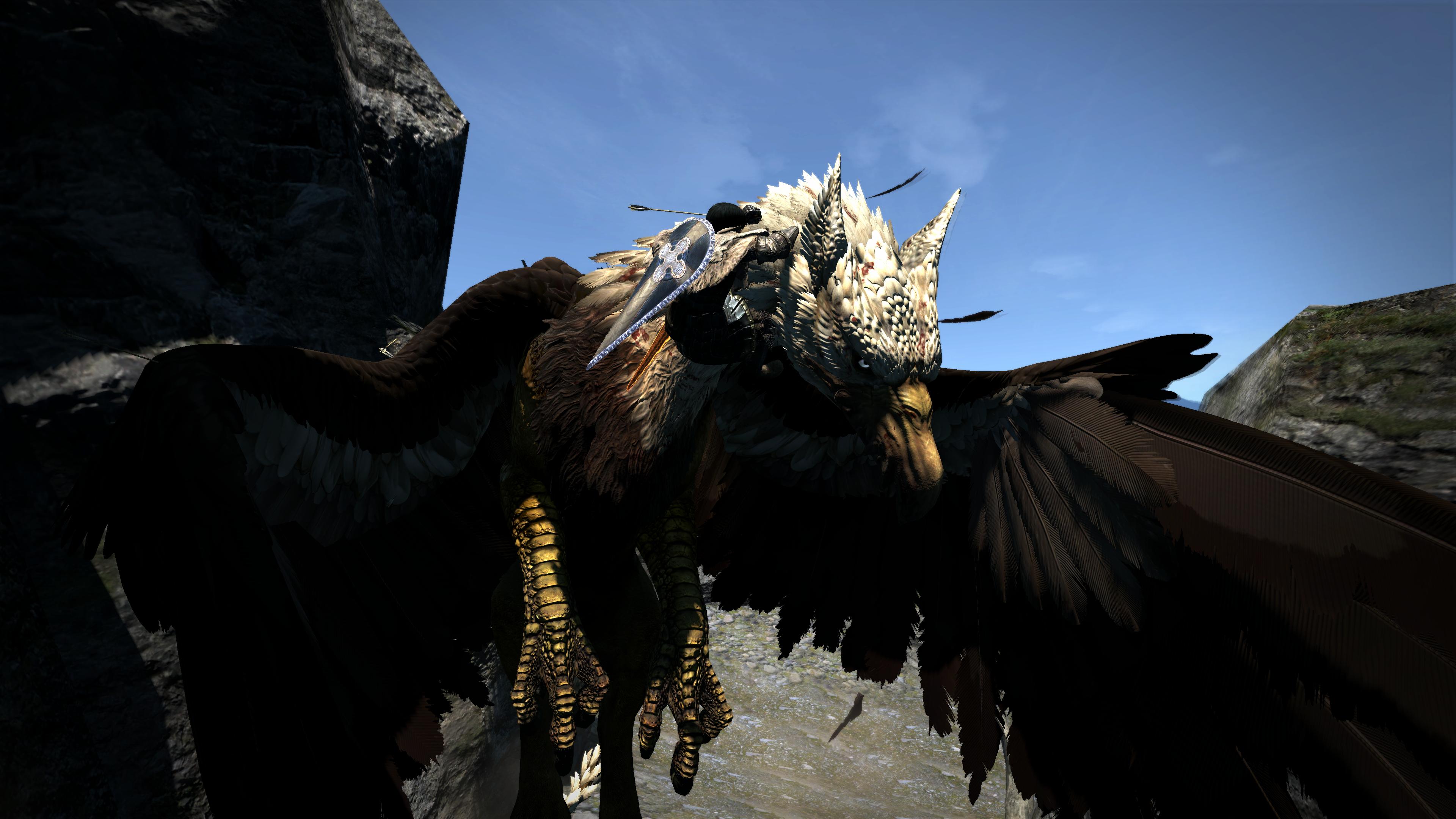 Dragon's Dogma Dark Arisen aigle