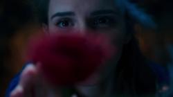 La Belle et la Bête : Emma Watson magnifie le premier teaser !