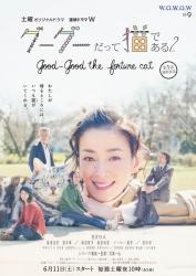 Gou_Gou,_The_Cat_2_(Japanese_Drama)-p1
