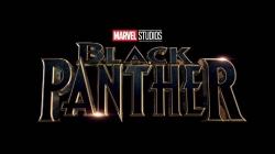 Présentation du personnage et du casting du film Black Panther !
