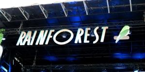 Rainforest Festival : un avant-goût de vacances au coeur de Fontainebleau