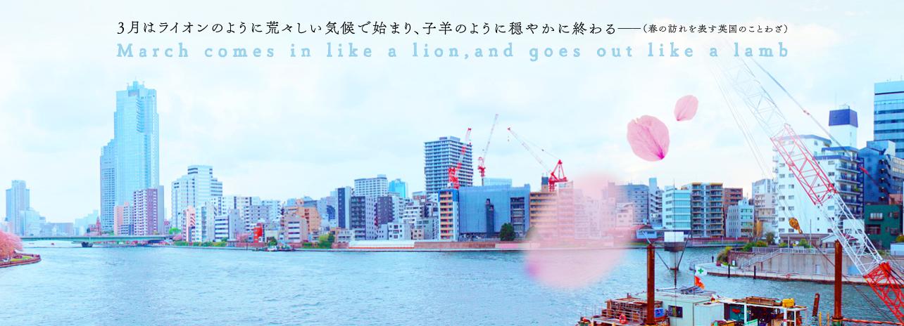 sangatsu-no-lion-lamb