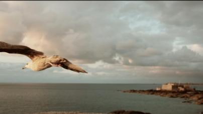 « Bro Gozh Ma Zadoù »  : Le clip de l'hymne breton avec une dizaine d'artistes locaux !