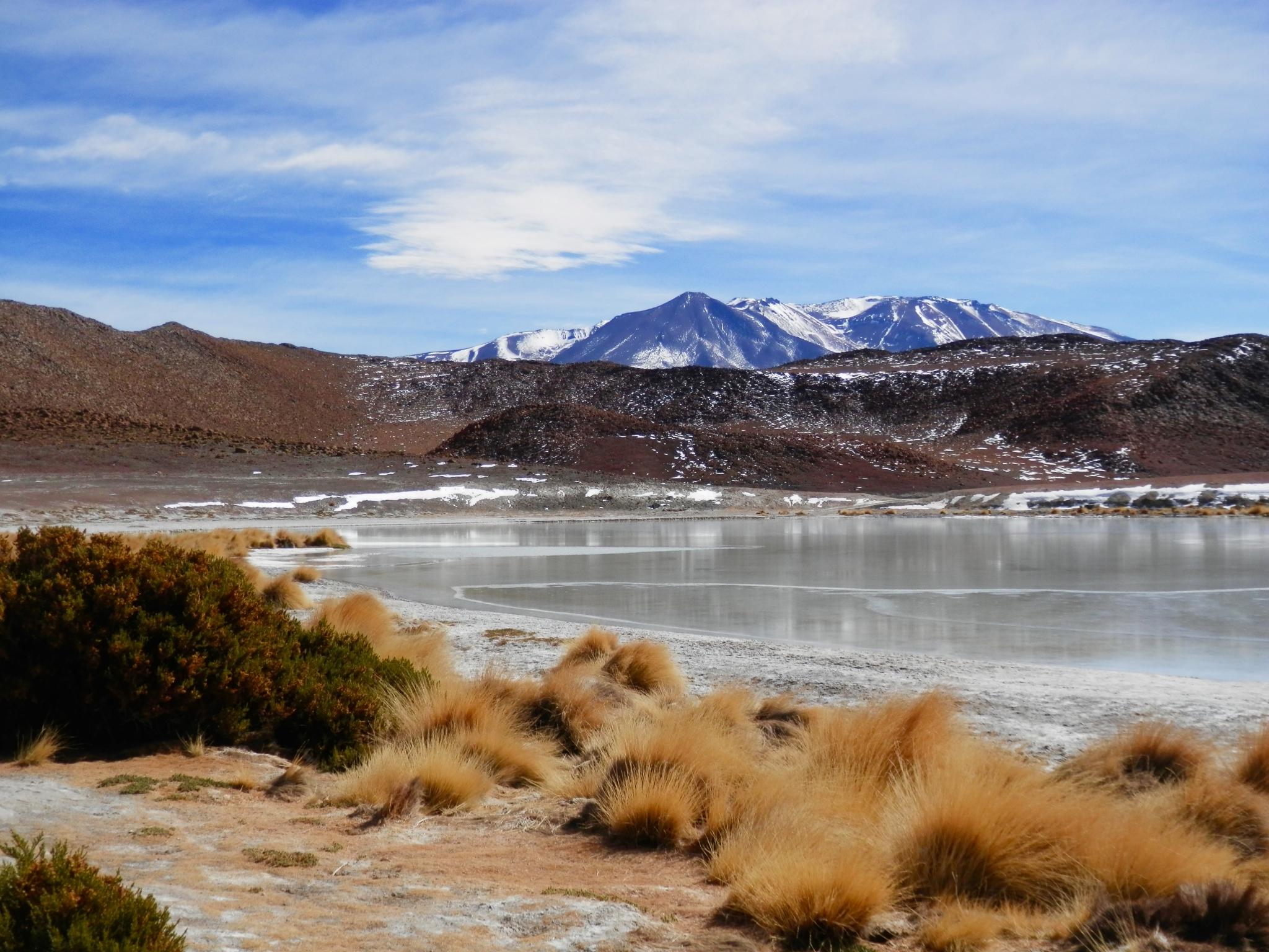 lagune altiplano