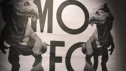 Report d'un vendredi soir au festival MOFO