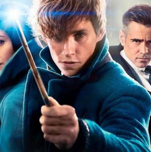 Critique DVD et Blu-Ray «Les Animaux Fantastiques» de David Yates