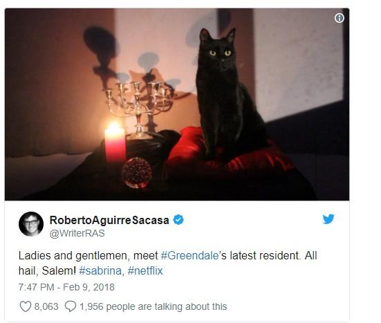 sabrina-lapprentie-sorciere-photographie-salem-chat-noir-twitter-justfocus-wordpress