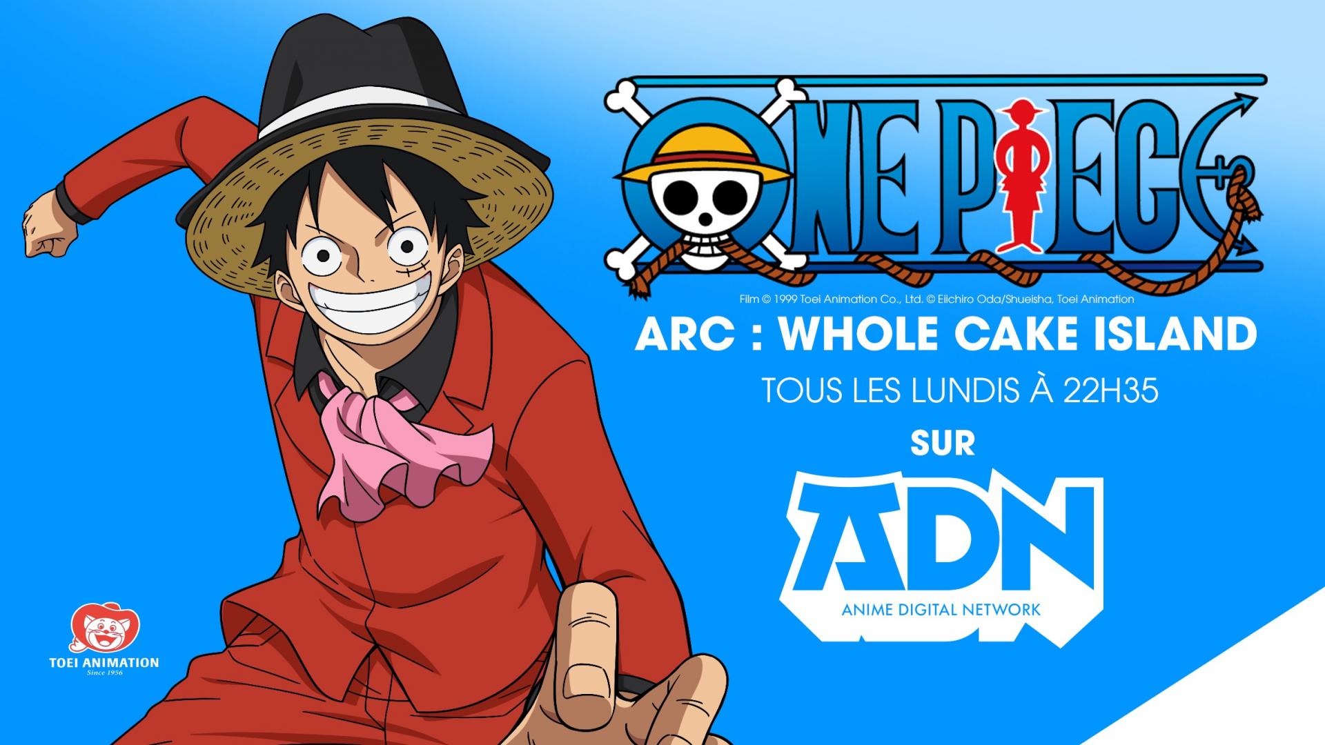One Piece - ADN