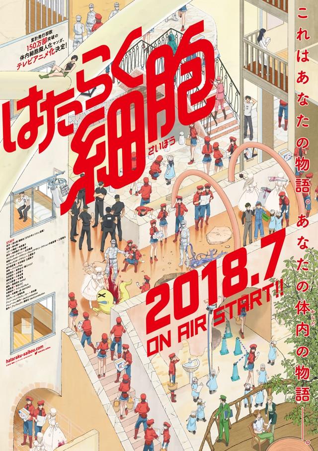 Hataraku Saibou crunchyroll anime