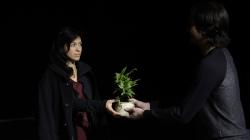 Jardin Suspendus : le Japon au théâtre de Belleville