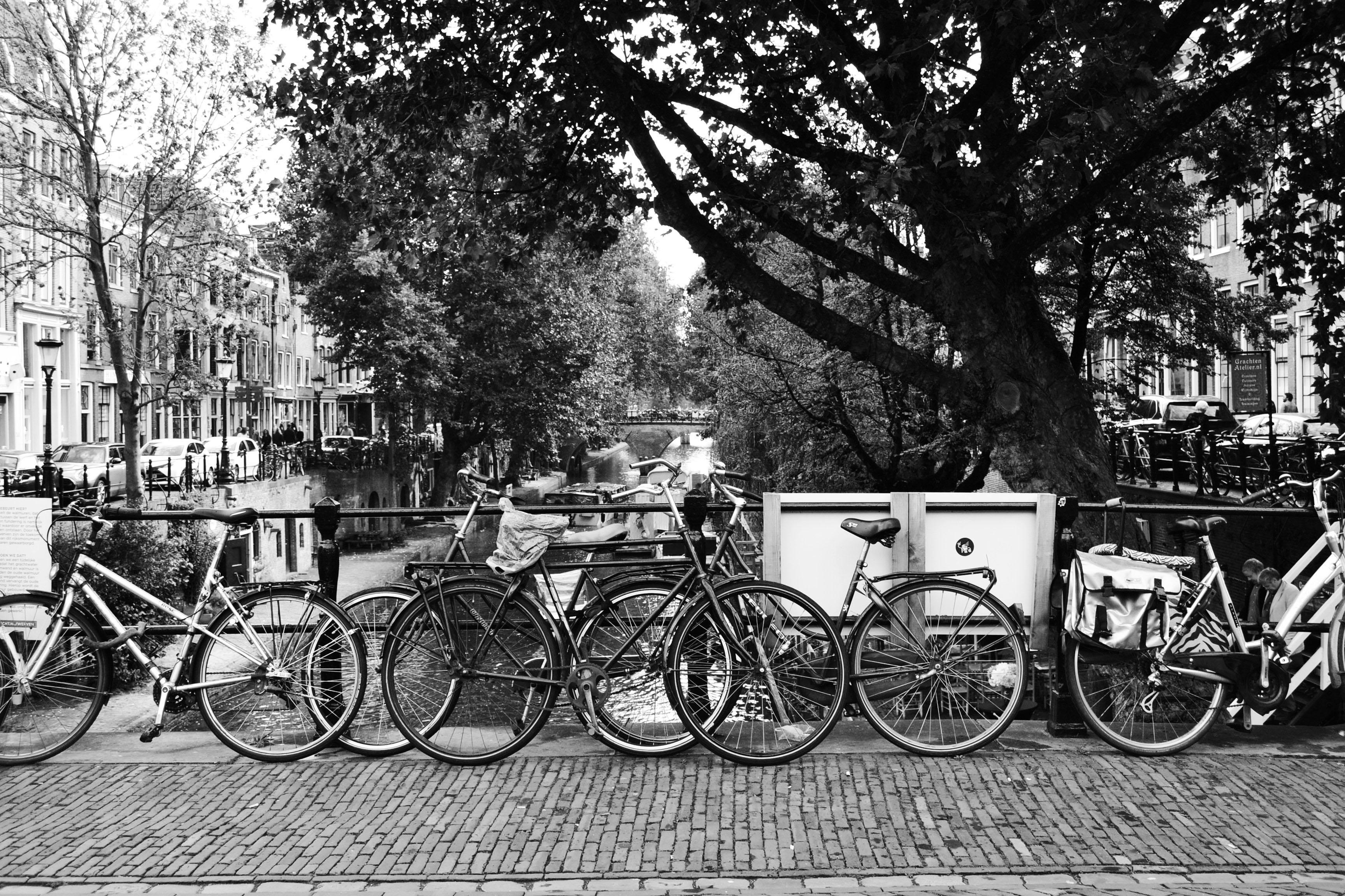 Vélos dans une ville des Pays-Bas