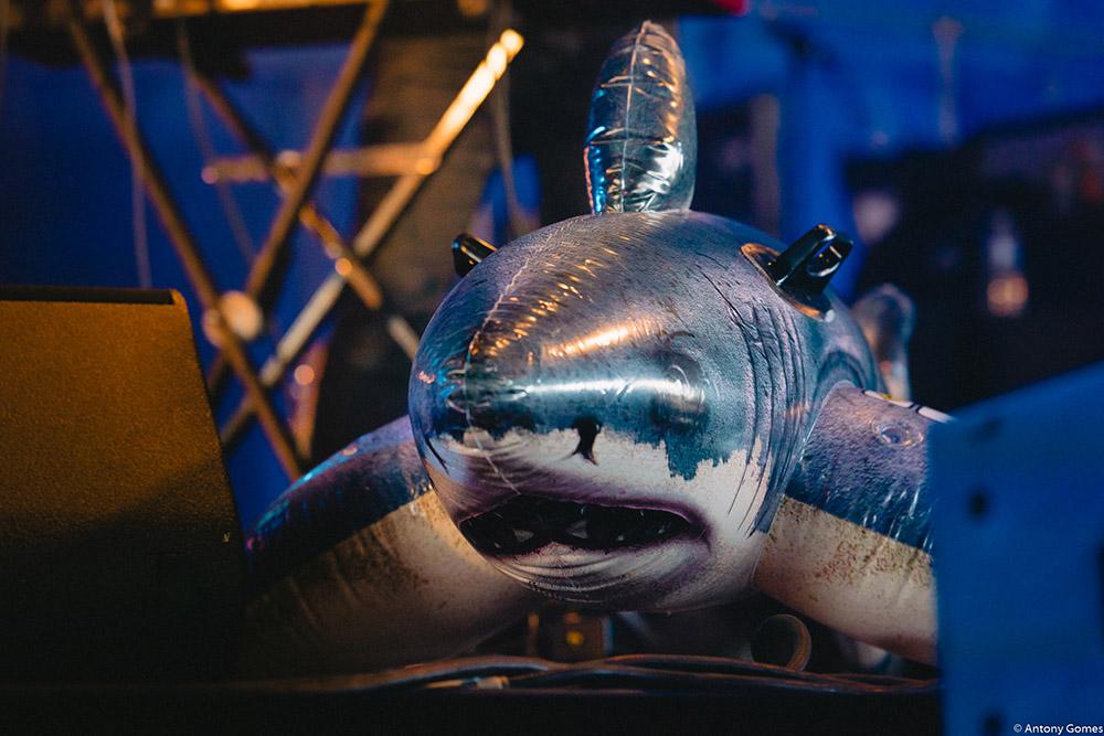 Requin Chagrin - Antony Gomes