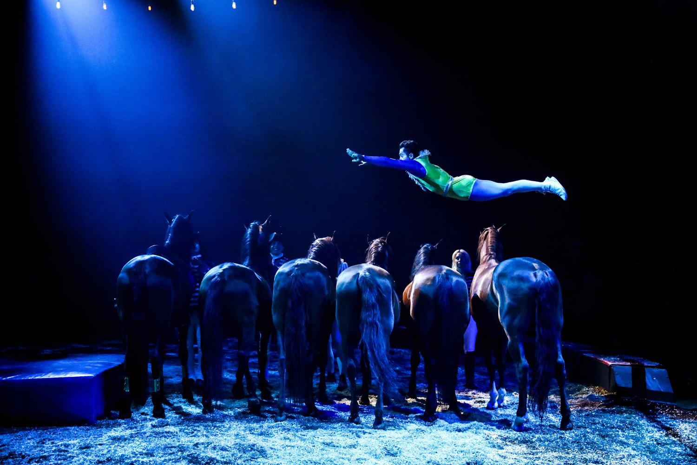 Cirque Alexis Gruss - Origines