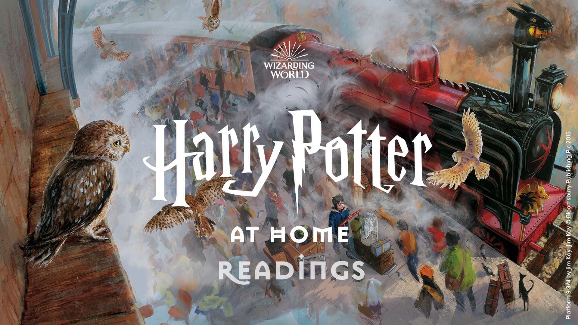 Harry Potter at home readings banner