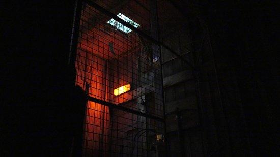 L'Abattoir de One Hour : un huis clos horrifique mouvementé