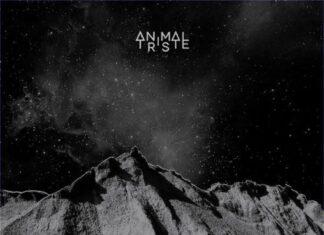 animal triste album