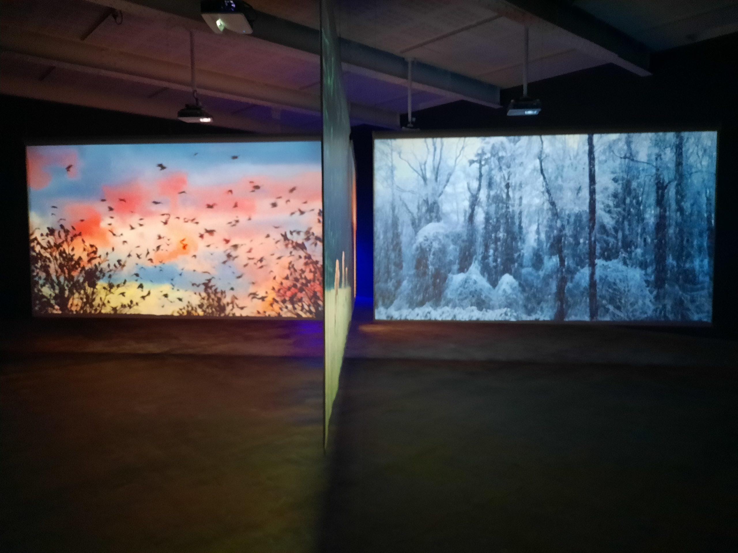 """vue de l'exposition """"Après"""", à la Galerie Marian Goodman (2021)"""