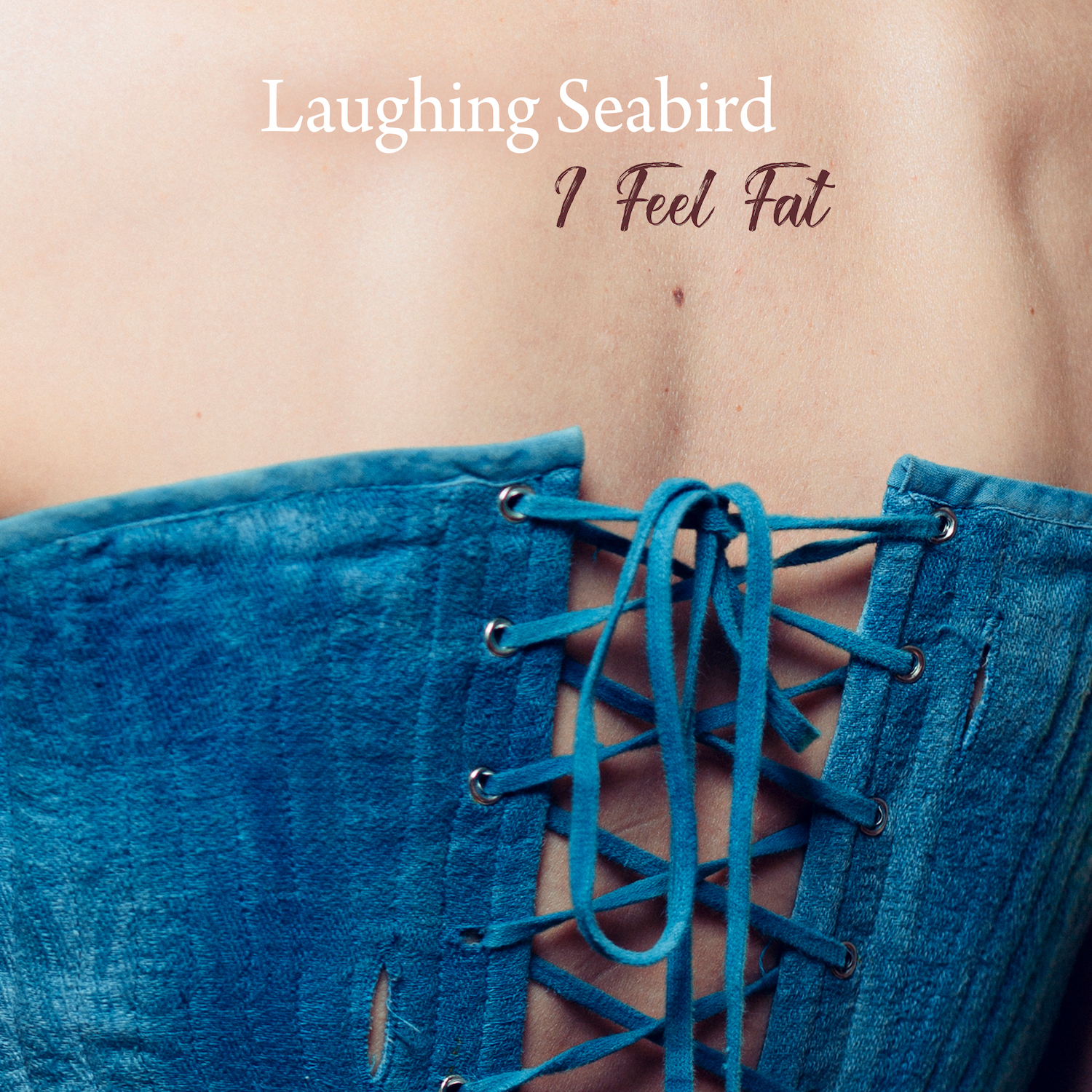 "Laughing Seabird - ""I Feel Fat"" (Music Video)"