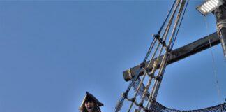 sparrow pirate
