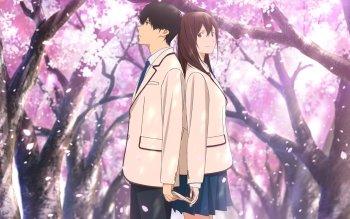 Haruki et Sakura